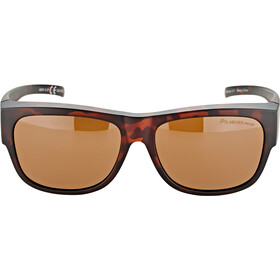 Alpina Overview II P Glasses havana matt/brown mirror
